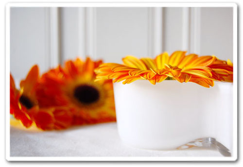 blommor-copy.jpg