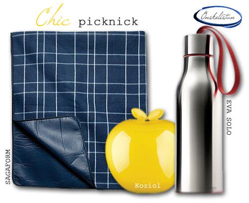 chicpicknick.jpg
