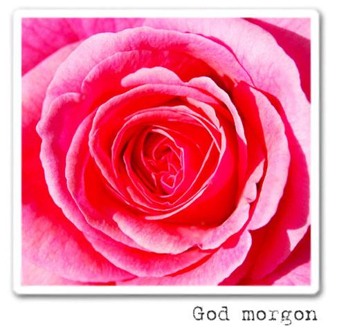 godmorgon-copy.jpg