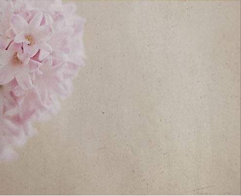 hyacint-copy.jpg