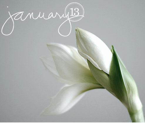 13januari-copy.jpg