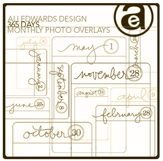 aliedwards365-copy.jpg