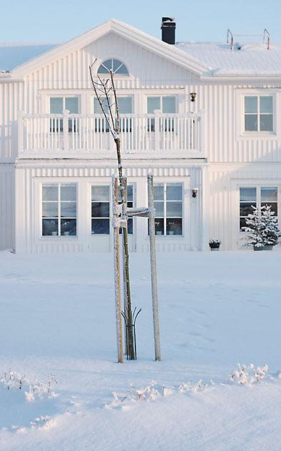 vinterhus.jpg