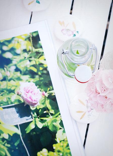 26verbena1blogg.jpg