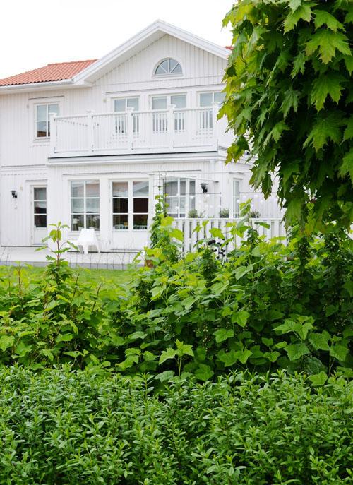 1616trädgårdsstil9