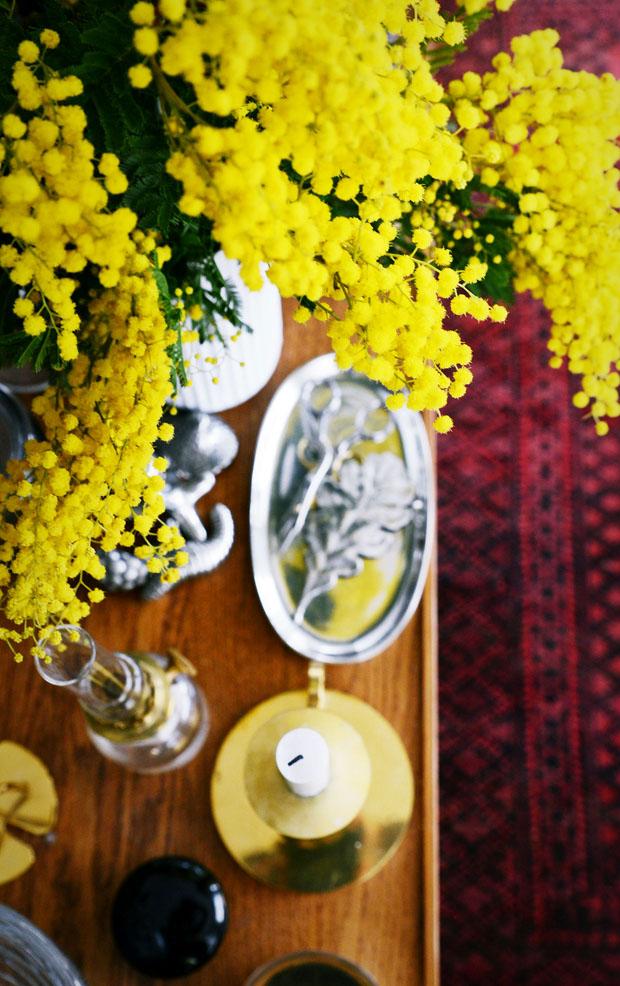 mimosagult