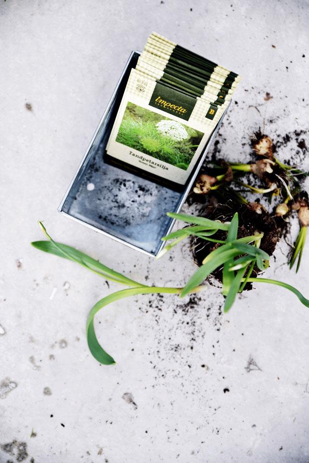 växthusfröpåse