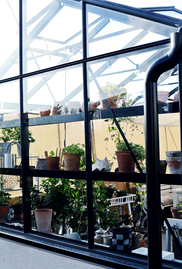 växthusetmajhyllor