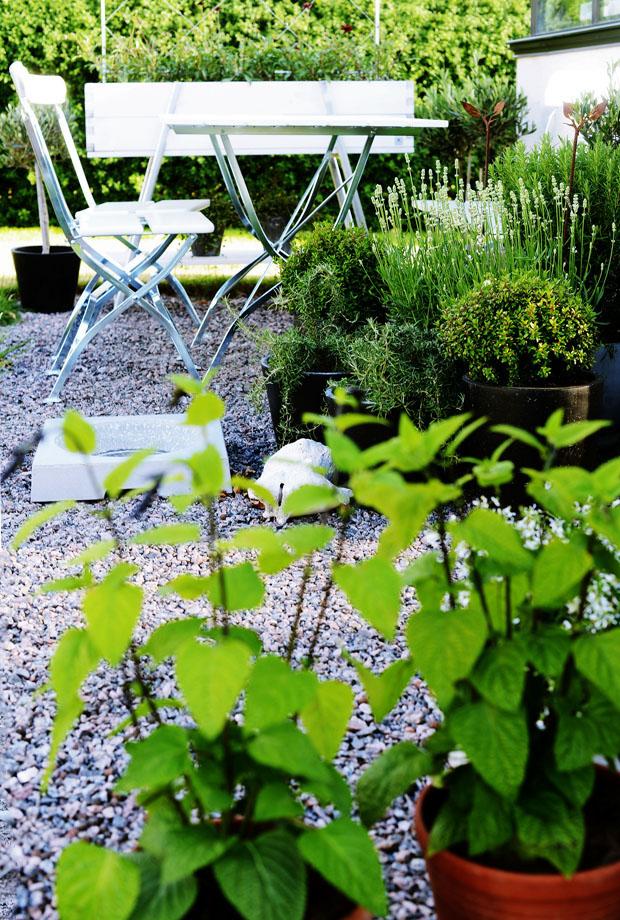 växthusetmajutekrukor